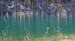 Kaindy Lake Flooded Forest Autumn Emerald 4K Stock Footage