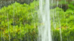 Splashing water straight line up at green tree leaves Stock Footage