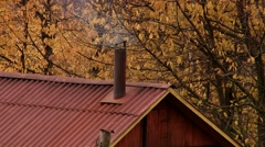 The smoke from the chimney of the house that is in woods Stock Footage
