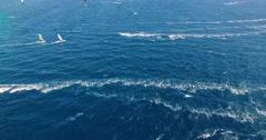 Kitesurfing and Windsurfing - top shot Stock Footage