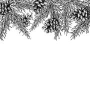 Fir tree and pine cone hand drawn vector square frame for winter Stock Illustration