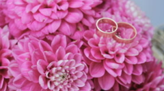 Wedding rings are on pink flowers, Wedding attributes, background Stock Footage
