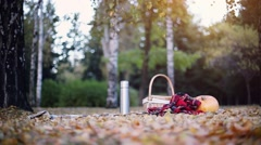 Scene of pumpkin, wicker baskets and plaid blanket on autumn leaves. 1920x1080 Stock Footage