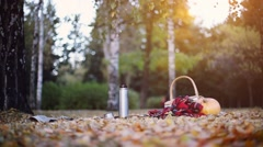 Scene of pumpkin, wicker baskets and plaid blanket on autumn leaves at sunset on Stock Footage