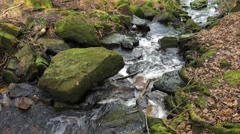 Cleddon Falls waterfall River Wye, autumn leaves as water runs through rocks Stock Footage
