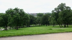 Young adult woman in park using camera phone Stock Footage