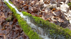 Water spring in trough Stock Footage
