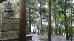 Heavy rain at a temple in Kyoto, Japan Stock Footage