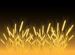 Ripe yellow wheat ears on a field Stock Illustration