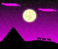 Night in desert Stock Illustration