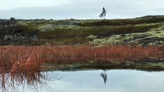 A small mountain lake in the autumn tundra. Stock Footage