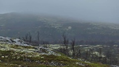 Autumn northern view - tundra landscape on a background of mountains. Stock Footage