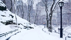 Snowy Central Park Path Manhattan Stock Footage
