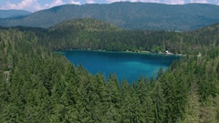 Aerial - Flying over and above spruce forest revealing the sunlit lake Stock Footage