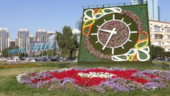Flower Clock  Minute Almaty Kazakhstan Panorama Time Lapse 4K Stock Footage