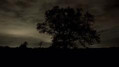 Night landscape time lapse Stock Footage