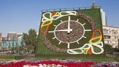 Flower Clock Almaty Panorama Time Lapse 4K Stock Footage