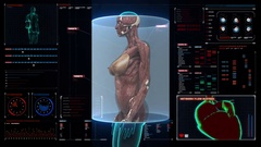 Female body scanning muscle structure in digital display dashboard. X-ray view. Stock Footage