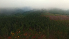 An aerial view from the clouds of a forest with a clear-cut. Stock Footage