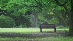 Park bench Resting place Summer Japan Stock Footage