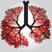 Tree Branches Like Lungs - Vector Illustration Stock Illustration