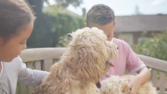 4K Happy little boy and girl playing with pet dogs in the garden Stock Footage