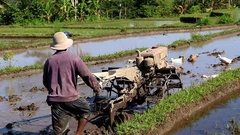 Indonesia farmer working with machine. Dig over the field with mechanical cow Stock Footage