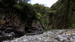La Reunion Tropical gorge, canyon with river Stock Footage