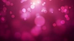 Animated Pink Bokeh Lights Stock Footage