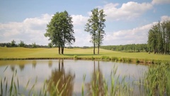 Beautiful landscape of pond on the golf field Stock Footage