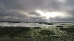 Mystic River Landscape Stock Footage