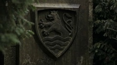 Karl 4 Monument. Karlovy Vary Stock Footage