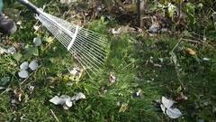 Gardener pitchfork kills leaves Stock Footage