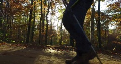 Hiker's boots walking on forest path Stock Footage