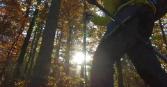 Hiking with trekking poles on forest path in the autumn forest Stock Footage