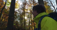 Boy hiking in forest Stock Footage