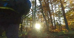 Hiker walking with poles and backpack at the sunset fall forest Stock Footage