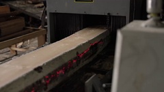 Timber mill. View of sawing wood with laser marks Stock Footage