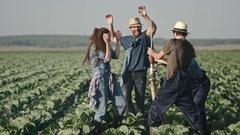 Farmer Friends Having Playful Brawl on Field Stock Footage