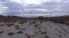 Aerial Drone Footage of sandy desert terrain with trees  Stock Footage