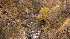 The first snow and yellow leaves on the banks of the river in the mountains Stock Footage