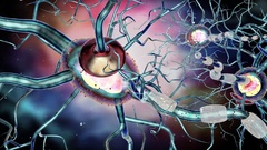 Nerve cells, concept neurological disease, tumors, brain surgery. Stock Footage