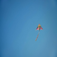 Rainbow Color Kite Flying With The Clear Blue Sky On The Background Stock Footage