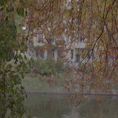 Berlin Spree River with Autumn Trees 4K Stock Footage