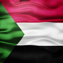 Realistic Seamless Loop Flag of Sudan Waving In The Wind. Stock Footage