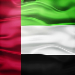 Realistic Seamless Loop Flag of United Arab Emirates Waving In The Wind. Stock Footage
