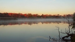 Mist rises over the river. On the banks of the autumn forest Stock Footage
