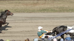 Harness horses fast trot on a track - side view (slow motion) Stock Footage