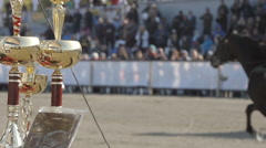 SLOW MOTION: Winner cups and racing horses fast trots on a stadium Stock Footage