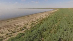 Steppe lake with a flock of birds flushing Stock Footage